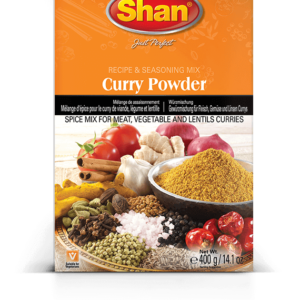 CURRY POWDER (100GR)